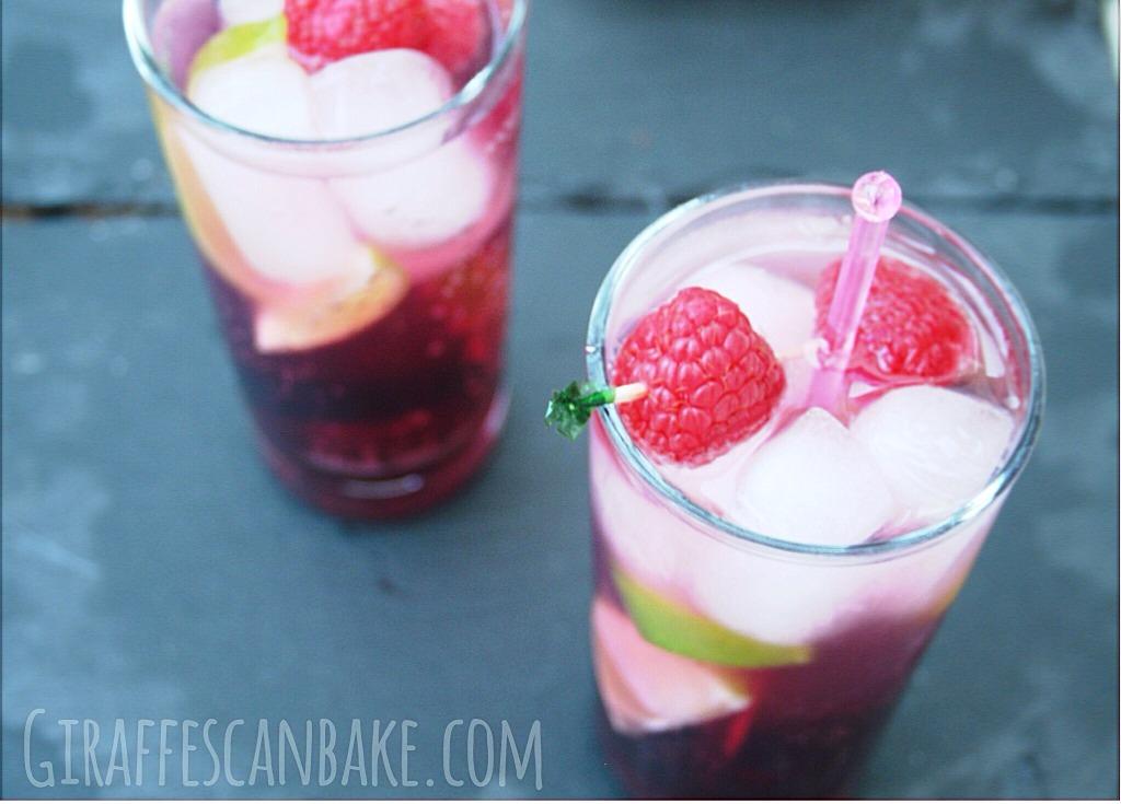 Chocolate Raspberry Vodka Tonic by Giraffes Can Bake