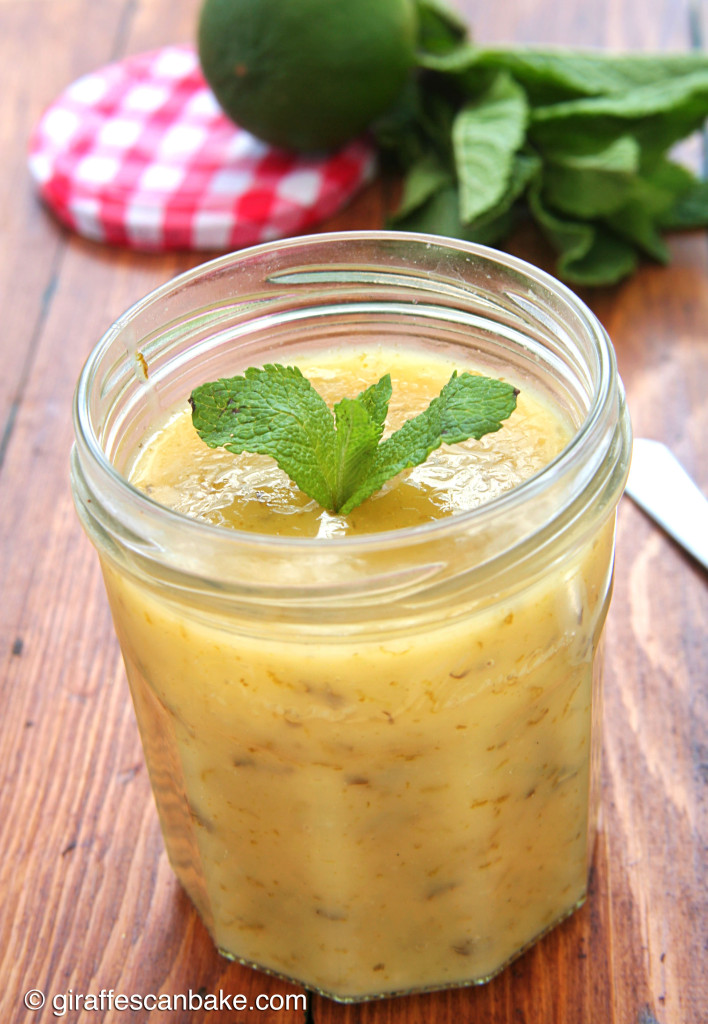Lime Mint Curd