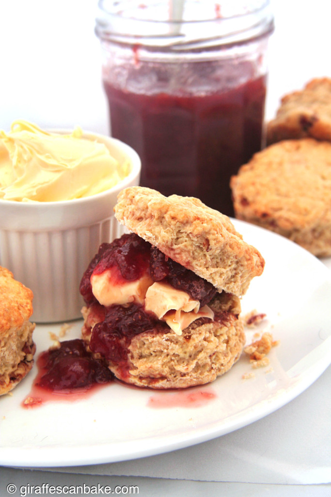 Roasted Strawberry British Scones by Giraffes Can Bake - Buttery, crumbly scones with roasted strawberries baked right in. So easy and quick to make, you can't go wrong. Serve with jam, clotted cream and a cup of tea for your very own homemade Devonshire or Cornish Cream Tea
